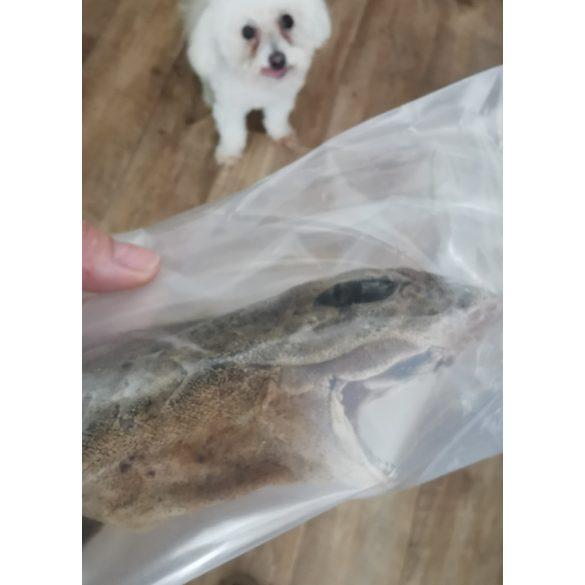 Egész cápa - extra fogtisztító kutyáknak